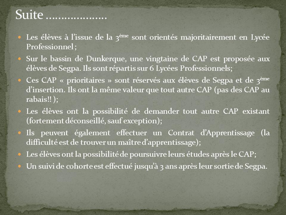 Les élèves à lissue de la 3 ème sont orientés majoritairement en Lycée Professionnel ; Sur le bassin de Dunkerque, une vingtaine de CAP est proposée a