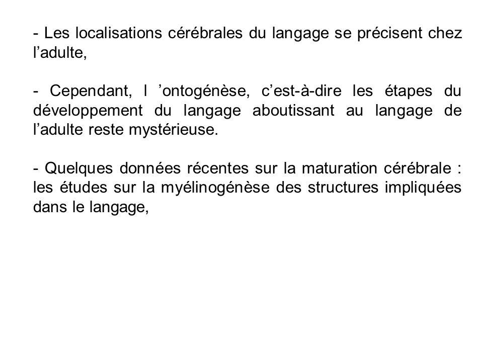 - Les localisations cérébrales du langage se précisent chez ladulte, - Cependant, l ontogénèse, cest-à-dire les étapes du développement du langage aboutissant au langage de ladulte reste mystérieuse.