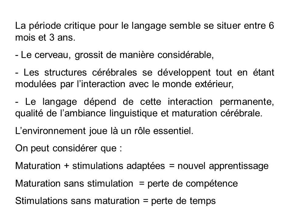La période critique pour le langage semble se situer entre 6 mois et 3 ans. - Le cerveau, grossit de manière considérable, - Les structures cérébrales