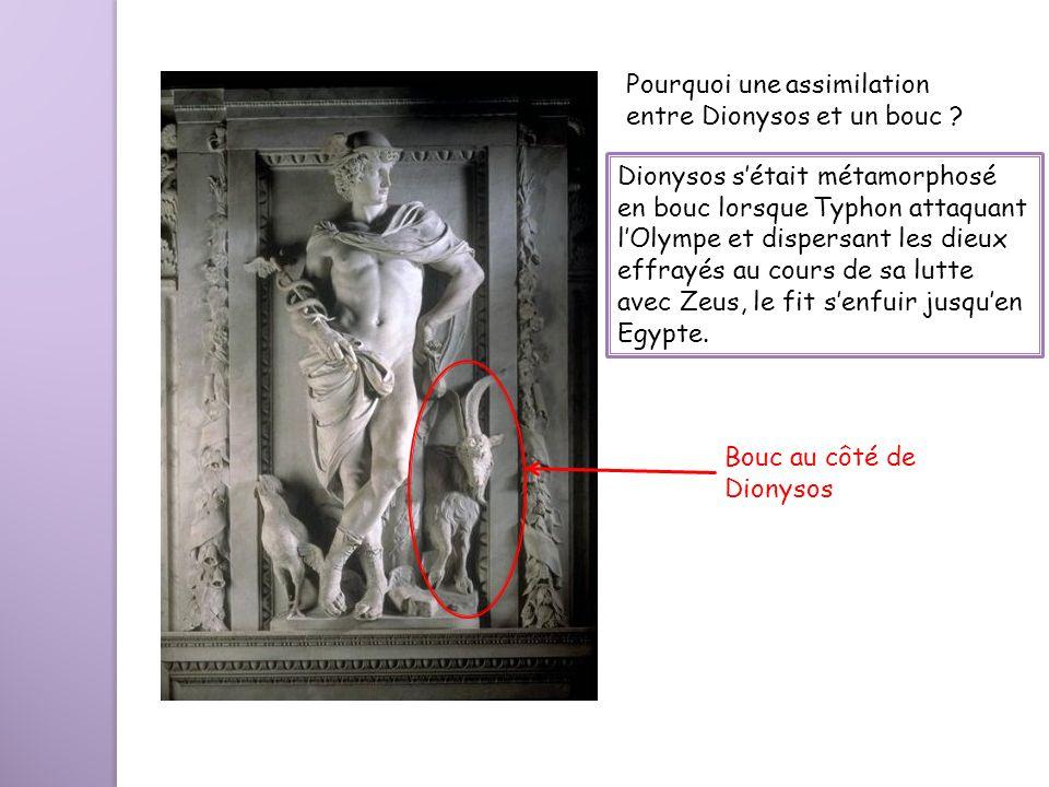 Bouc au côté de Dionysos Pourquoi une assimilation entre Dionysos et un bouc ? Dionysos sétait métamorphosé en bouc lorsque Typhon attaquant lOlympe e