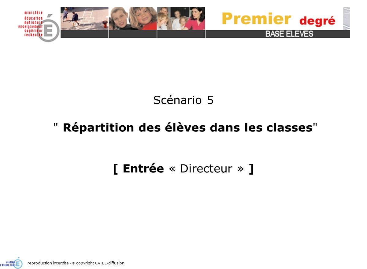 Scénario 5 : répartition des élèves dans les classes2 Écran daccueil reproduction interdite - © copyright CATEL-diffusion