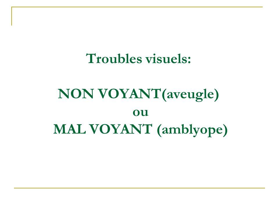Troubles visuels: NON VOYANT(aveugle) ou MAL VOYANT (amblyope)