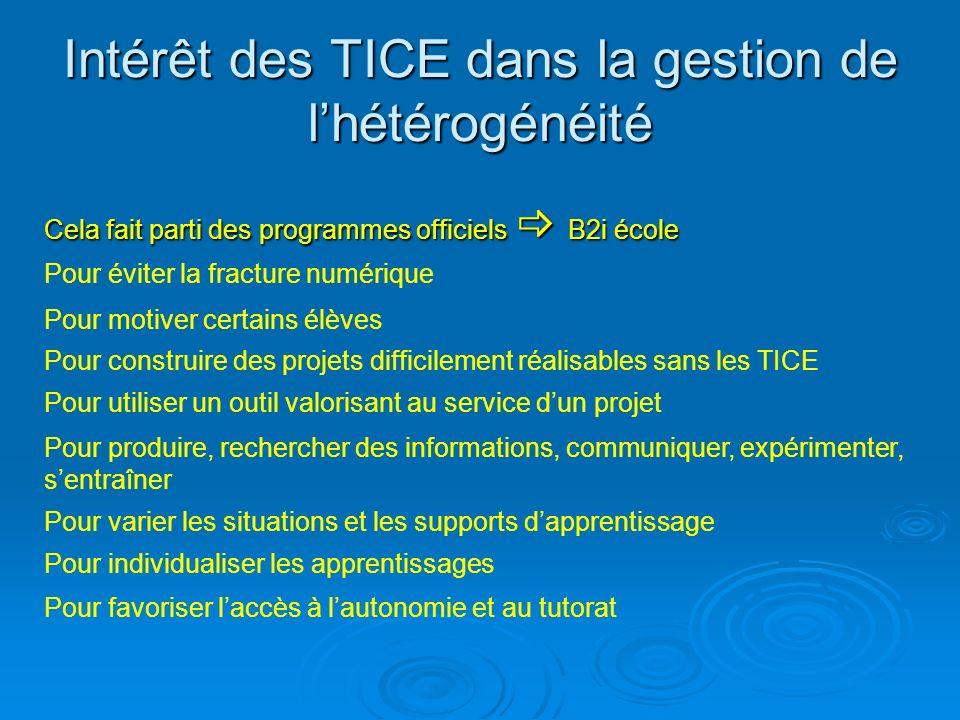 Intérêt des TICE dans la gestion de lhétérogénéité Cela fait parti des programmes officiels B2i école Pour éviter la fracture numérique Pour motiver c