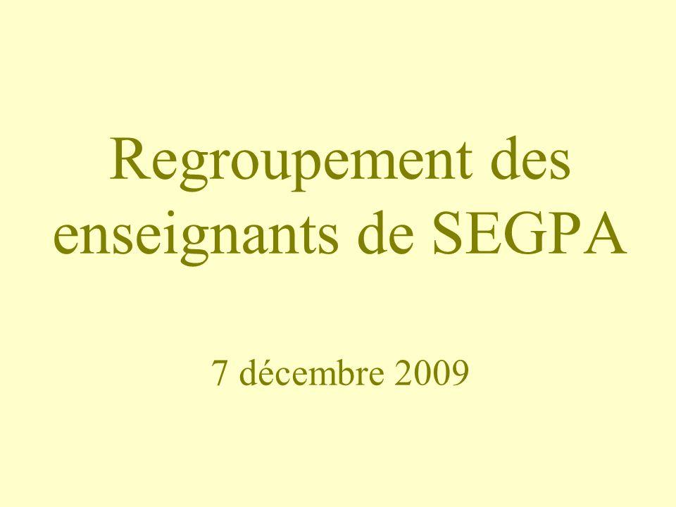 Regroupement des enseignants de SEGPA 7 décembre 2009