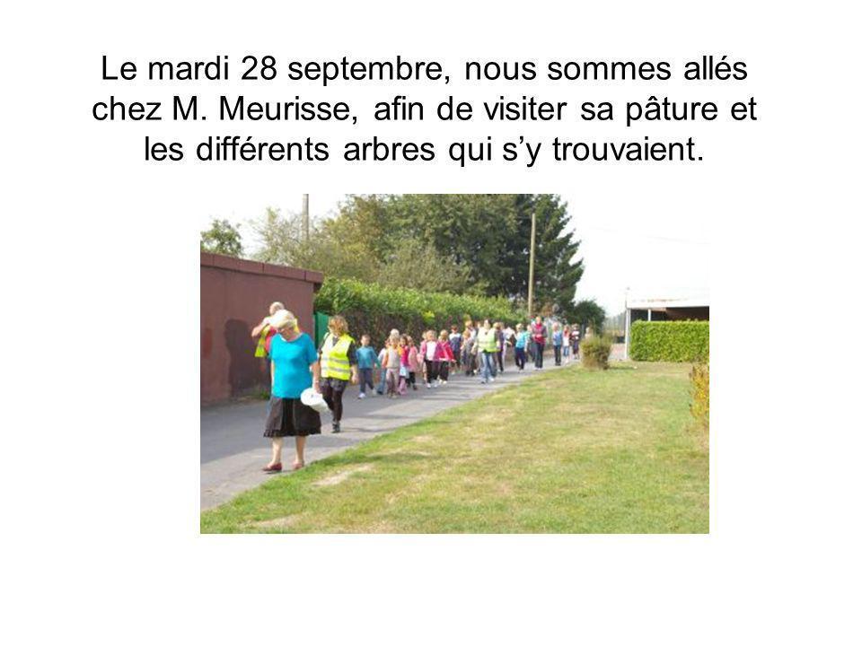 Le mardi 28 septembre, nous sommes allés chez M. Meurisse, afin de visiter sa pâture et les différents arbres qui sy trouvaient.