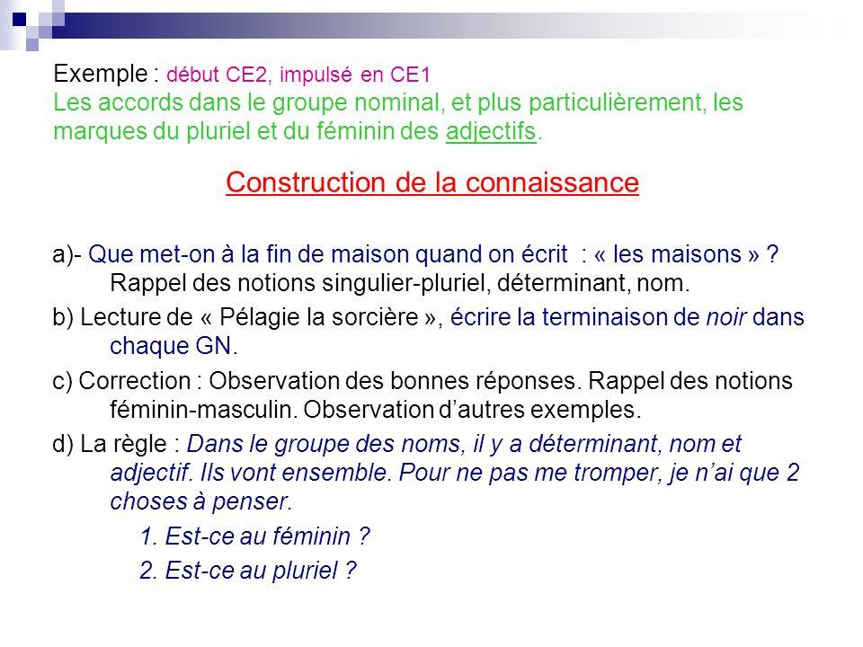 Exemple : début CE2, impulsé en CE1 Les accords dans le groupe nominal, et plus particulièrement, les marques du pluriel et du féminin des adjectifs.