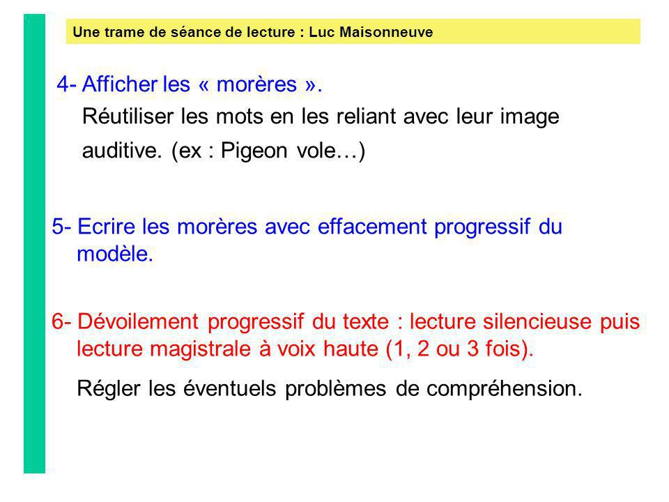 Une trame de séance de lecture : Luc Maisonneuve 4- Afficher les « morères ». Réutiliser les mots en les reliant avec leur image auditive. (ex : Pigeo