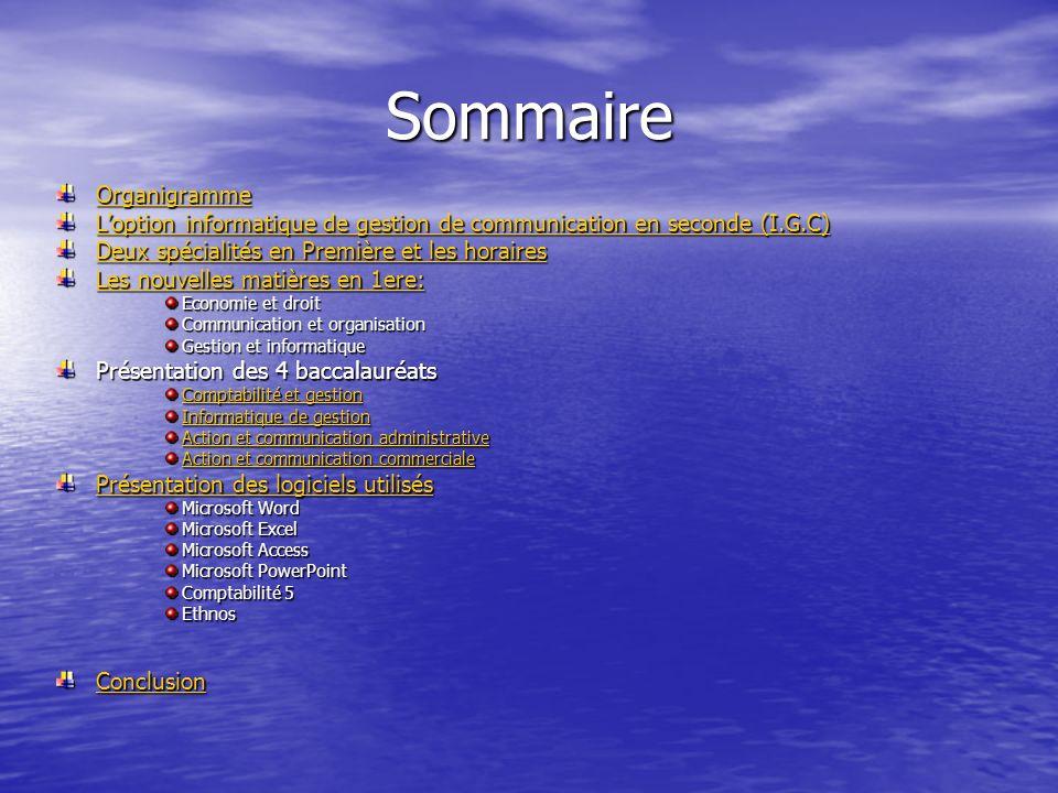 Sommaire Organigramme Loption informatique de gestion de communication en seconde (I.G.C) Loption informatique de gestion de communication en seconde