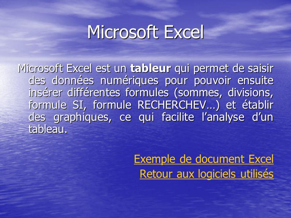 Microsoft Excel Microsoft Excel est un tableur qui permet de saisir des données numériques pour pouvoir ensuite insérer différentes formules (sommes,