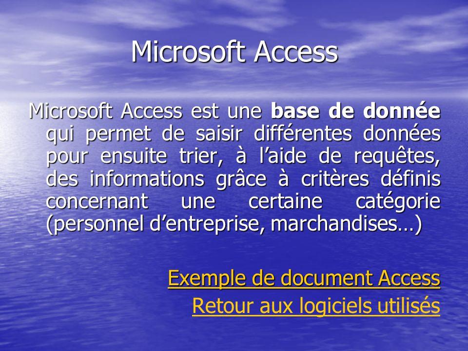 Microsoft Access Microsoft Access est une base de donnée qui permet de saisir différentes données pour ensuite trier, à laide de requêtes, des informa