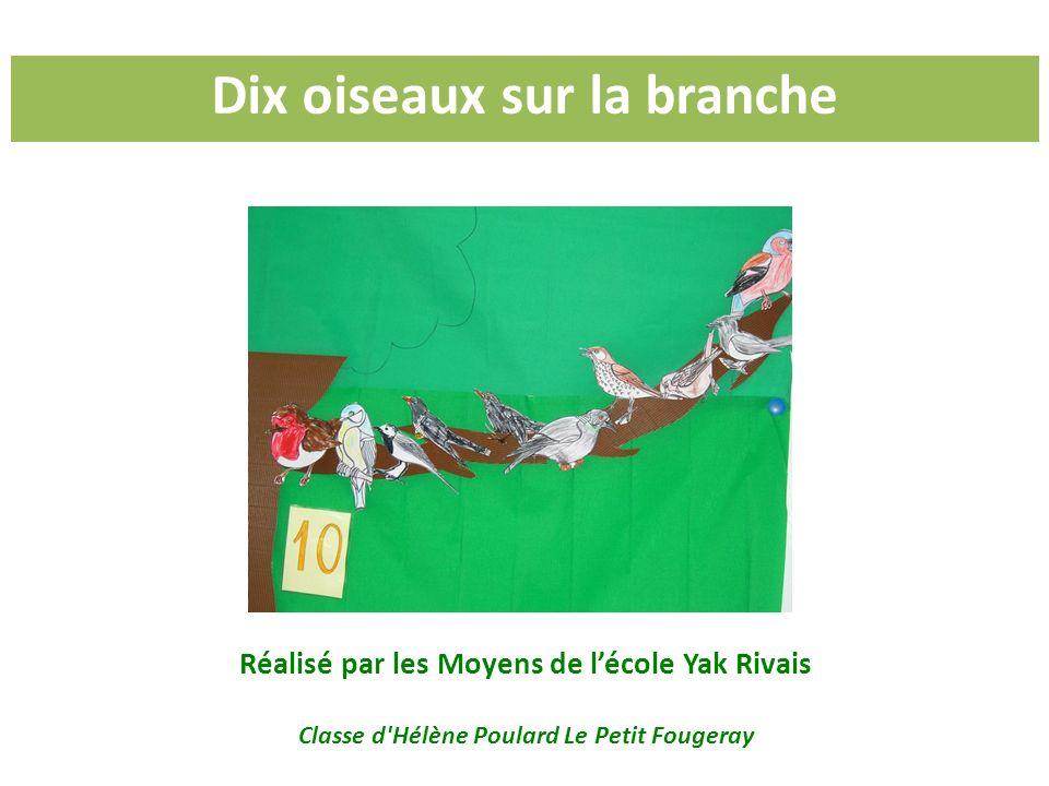 Dix oiseaux sur la branche Réalisé par les Moyens de lécole Yak Rivais Classe d'Hélène Poulard Le Petit Fougeray