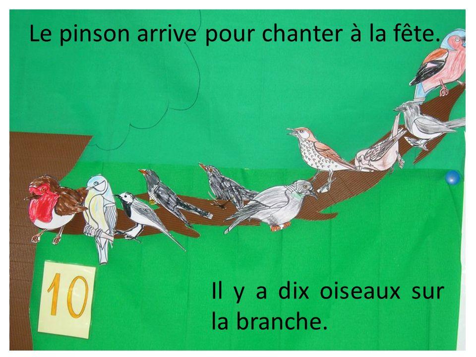 Le pinson arrive pour chanter à la fête. Il y a dix oiseaux sur la branche.