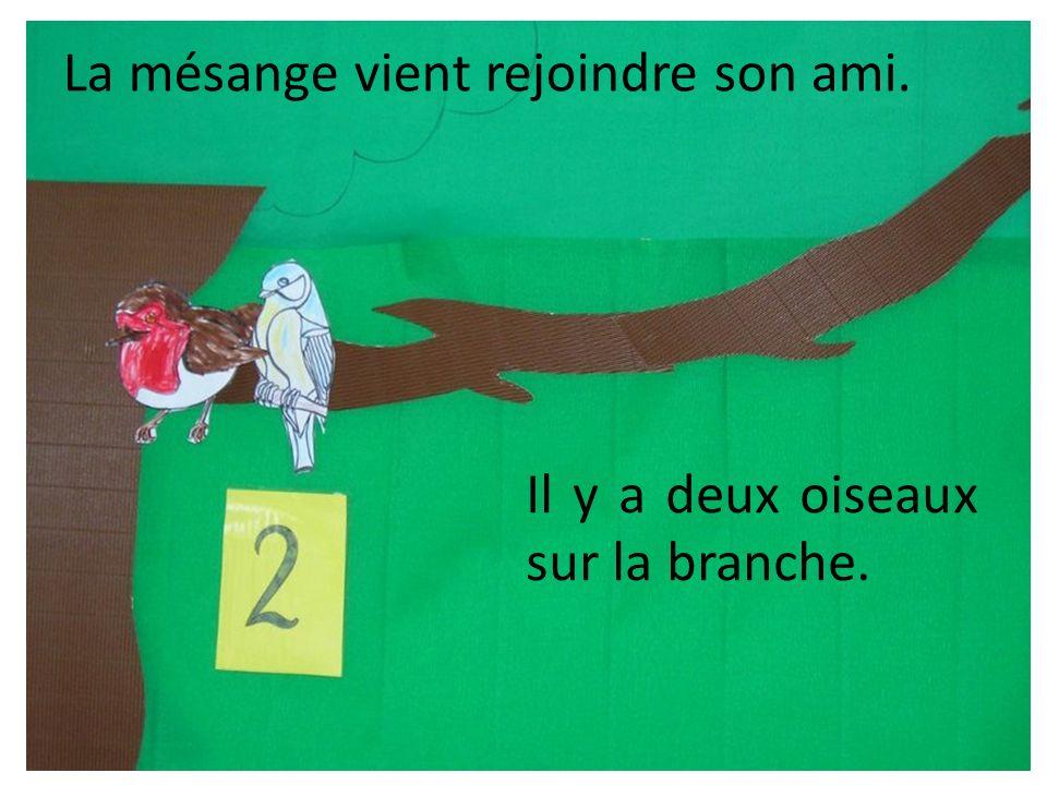 La mésange vient rejoindre son ami. Il y a deux oiseaux sur la branche.