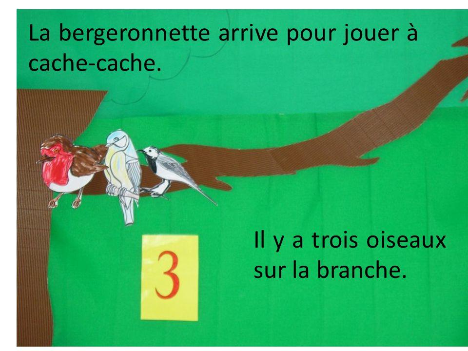 La bergeronnette arrive pour jouer à cache-cache. Il y a trois oiseaux sur la branche.
