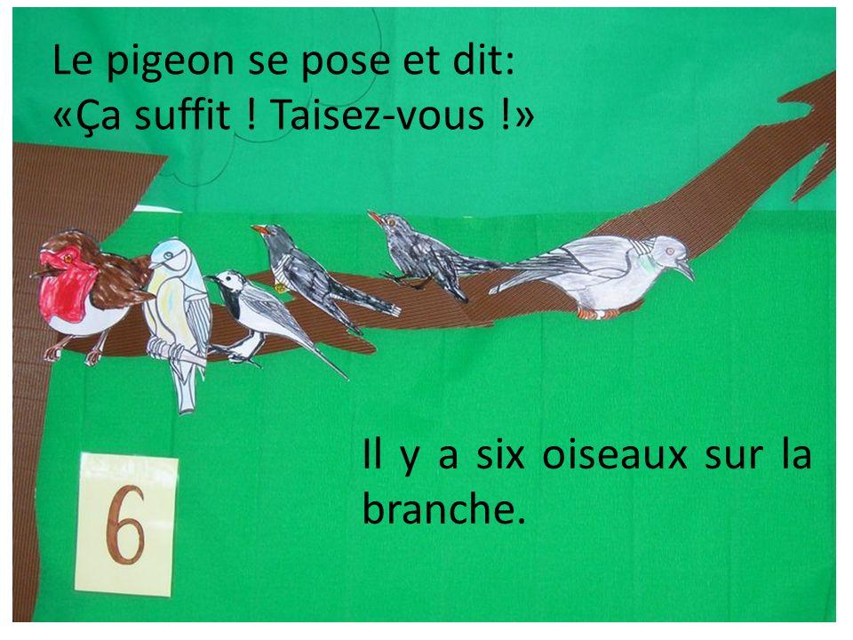 Le pigeon se pose et dit: «Ça suffit ! Taisez-vous !» Il y a six oiseaux sur la branche.