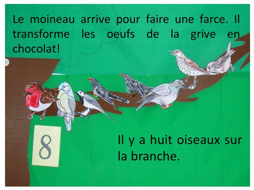 Le moineau arrive pour faire une farce. Il transforme les oeufs de la grive en chocolat! Il y a huit oiseaux sur la branche.