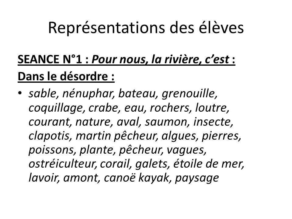 Représentations des élèves SEANCE N°1 : Pour nous, la rivière, cest : Dans le désordre : sable, nénuphar, bateau, grenouille, coquillage, crabe, eau,