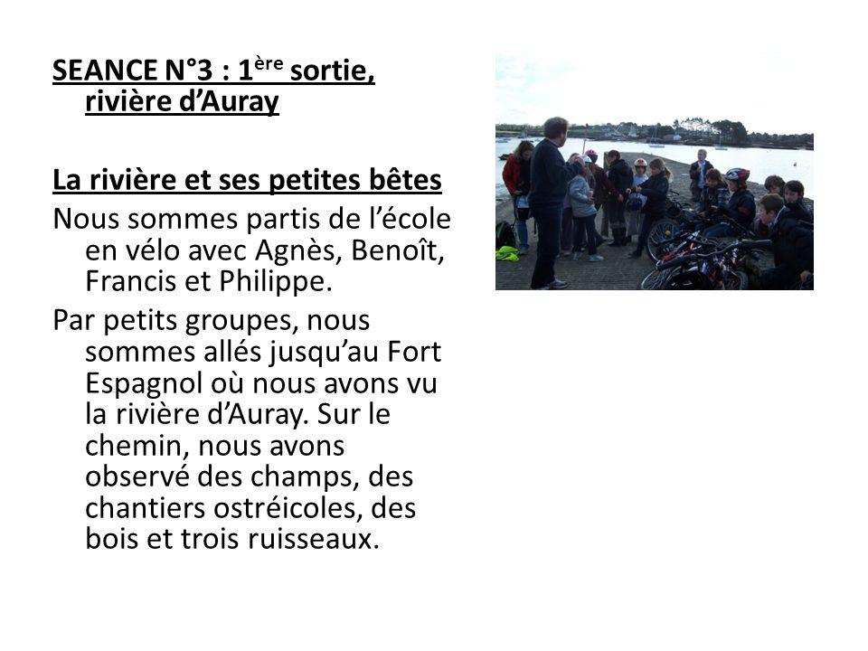 SEANCE N°3 : 1 ère sortie, rivière dAuray La rivière et ses petites bêtes Nous sommes partis de lécole en vélo avec Agnès, Benoît, Francis et Philippe