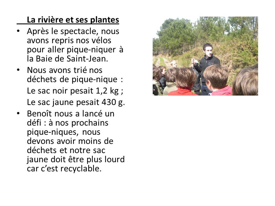 La rivière et ses plantes Après le spectacle, nous avons repris nos vélos pour aller pique-niquer à la Baie de Saint-Jean. Nous avons trié nos déchets