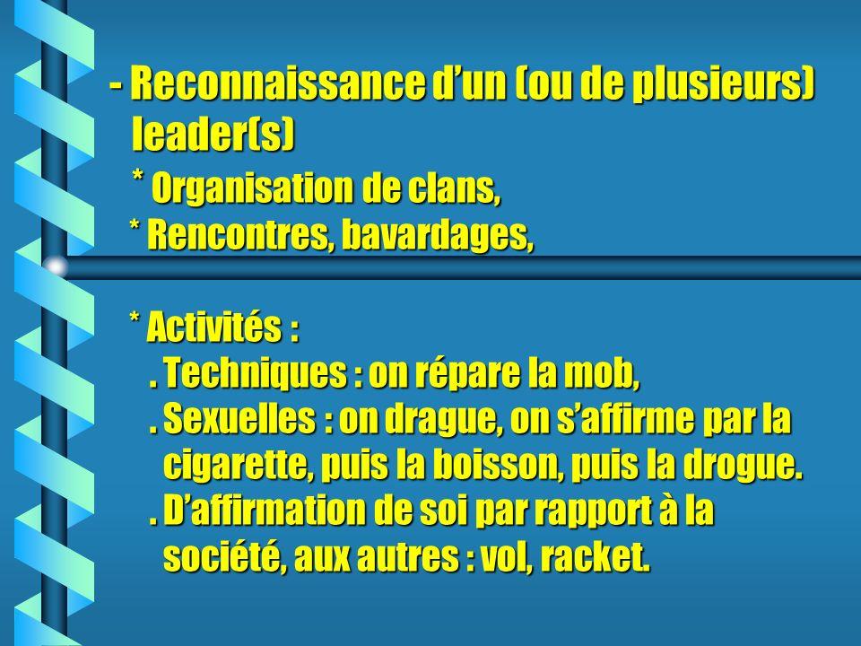 - Reconnaissance dun (ou de plusieurs) leader(s) * Organisation de clans, * Rencontres, bavardages, * Activités :.