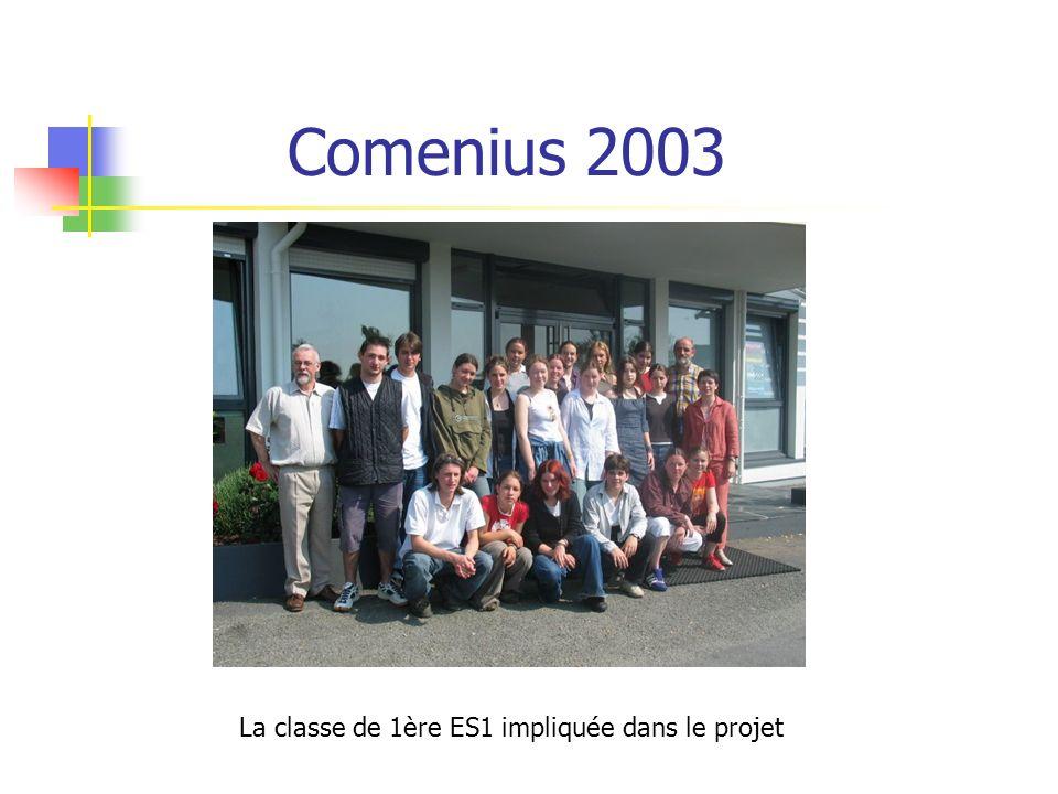 Comenius 2003 La classe de 1ère ES1 impliquée dans le projet
