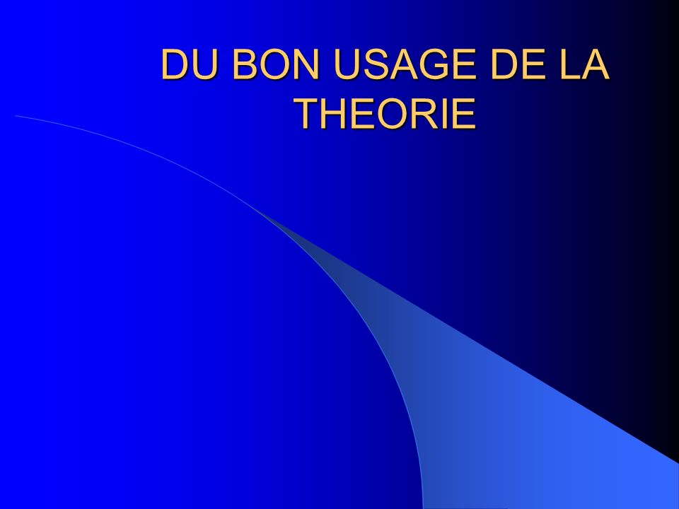 DU BON USAGE DE LA THEORIE