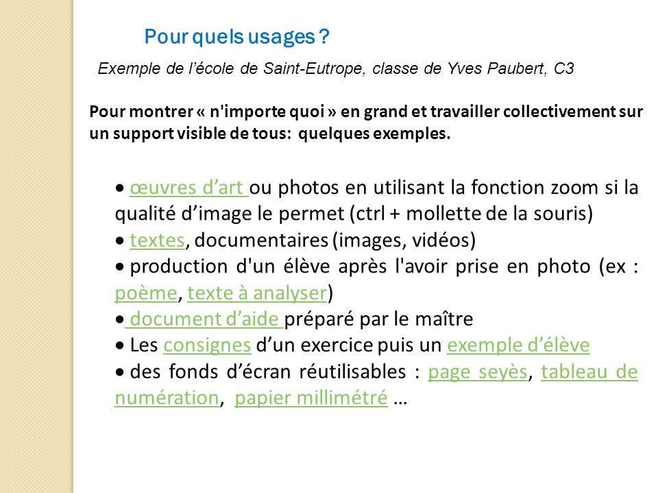 Pour quels usages ? Exemple de lécole de Saint-Eutrope, classe de Yves Paubert, C3 Pour montrer « n'importe quoi » en grand et travailler collectiveme