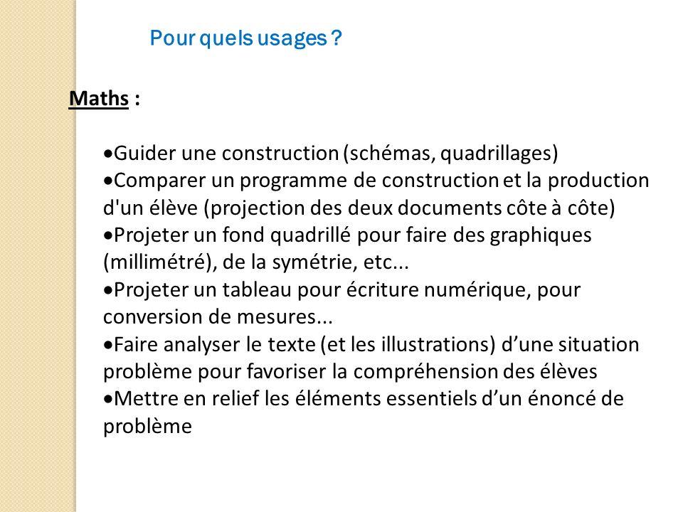 Pour quels usages ? Maths : Guider une construction (schémas, quadrillages) Comparer un programme de construction et la production d'un élève (project