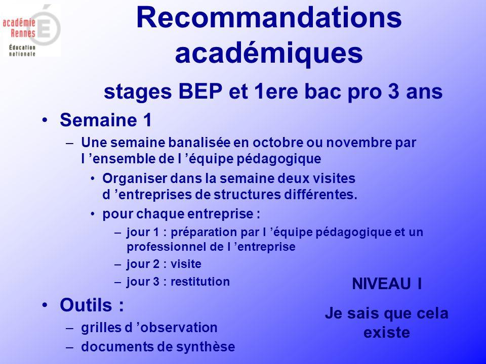 Recommandations académiques stages BEP et 1ere bac pro 3 ans Semaines 2 et 3: –Placées en fin de première année de formation.