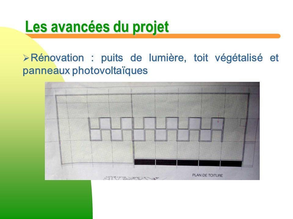 Les avancées du projet Rénovation : puits de lumière, toit végétalisé et panneaux photovoltaïques