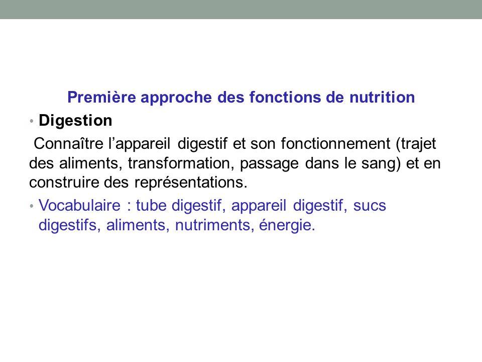 Première approche des fonctions de nutrition Digestion Connaître lappareil digestif et son fonctionnement (trajet des aliments, transformation, passage dans le sang) et en construire des représentations.