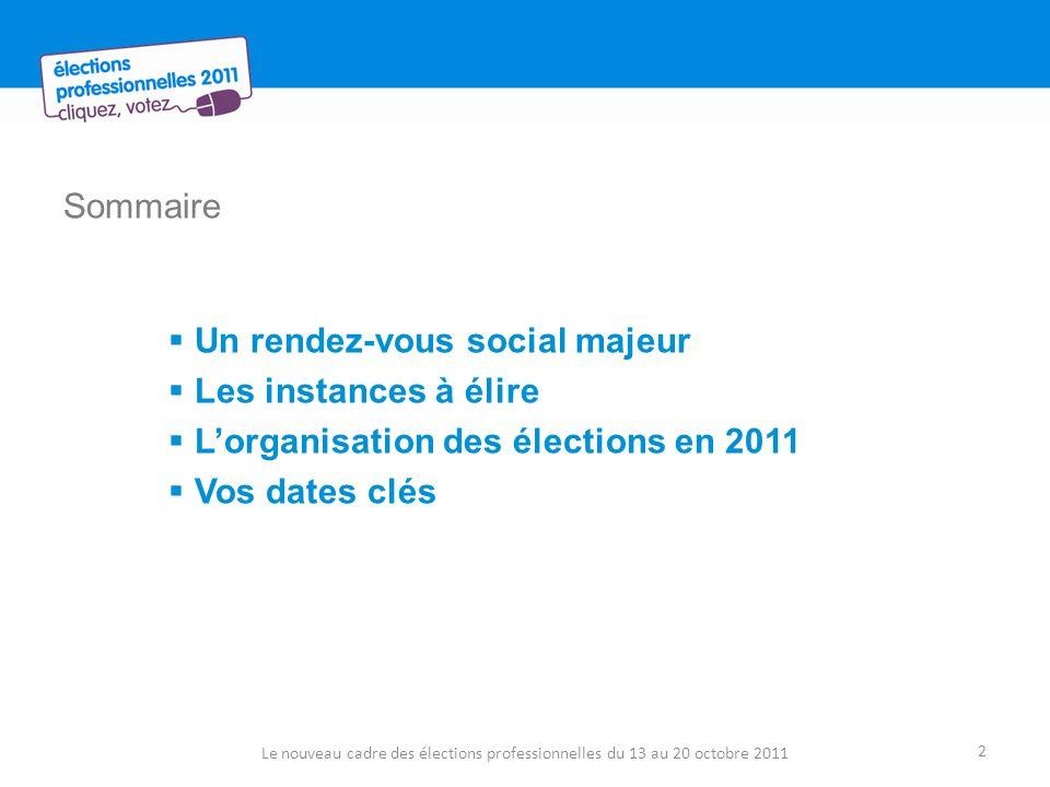 Sommaire Un rendez-vous social majeur Les instances à élire Lorganisation des élections en 2011 Vos dates clés Le nouveau cadre des élections professi