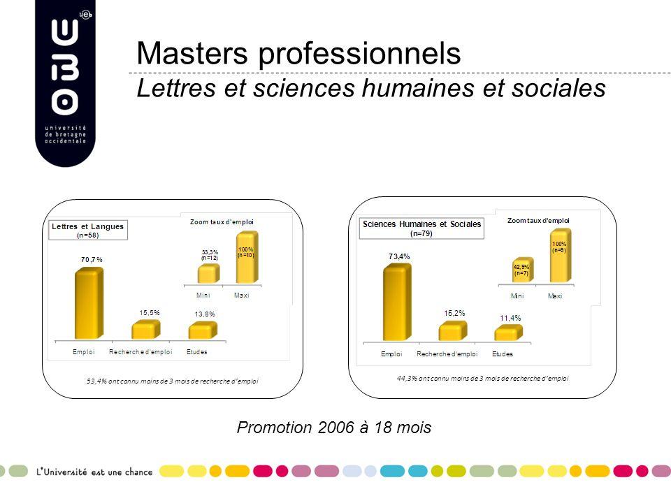 Masters professionnels Lettres et sciences humaines et sociales 44,3% ont connu moins de 3 mois de recherche demploi Promotion 2006 à 18 mois 53,4% on