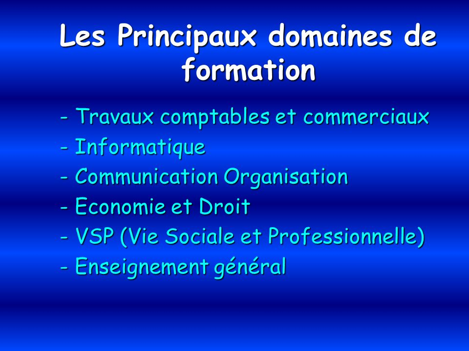 Les Principaux domaines de formation - Travaux comptables et commerciaux - Informatique - Communication Organisation - Economie et Droit - VSP (Vie So