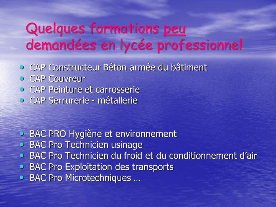 Quelques formations peu demandées en lycée professionnel CAP Constructeur Béton armée du bâtiment CAP Constructeur Béton armée du bâtiment CAP Couvreu