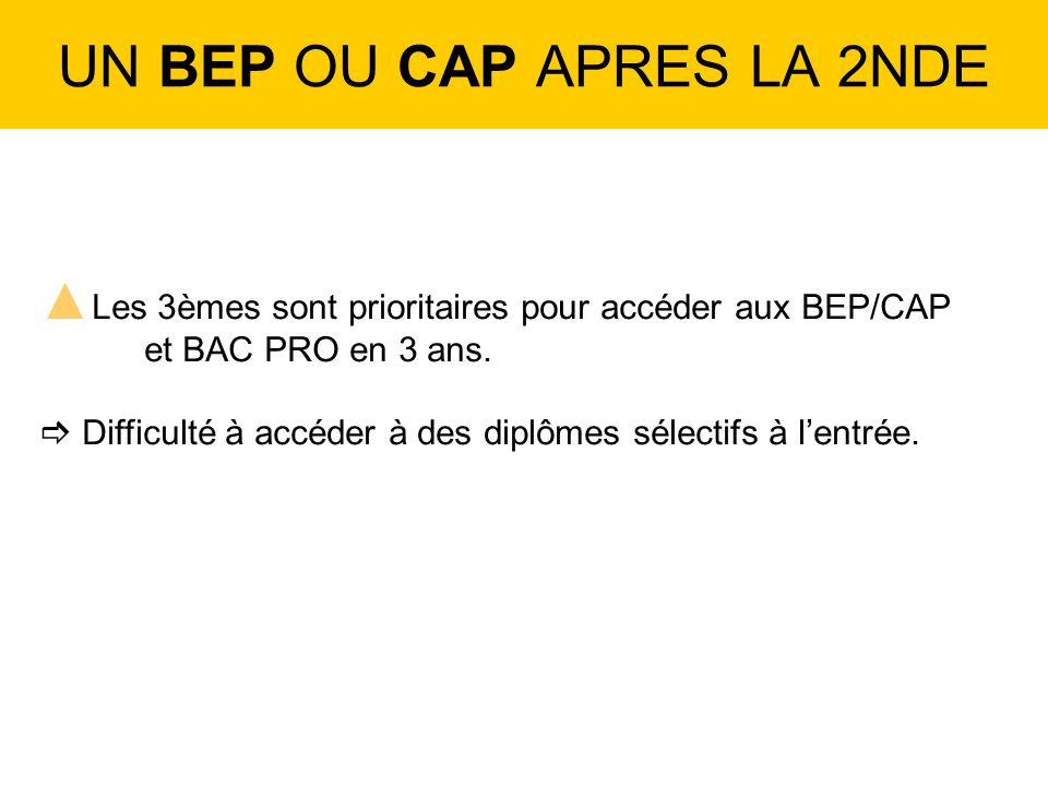 UN BEP OU CAP APRES LA 2NDE Les 3èmes sont prioritaires pour accéder aux BEP/CAP et BAC PRO en 3 ans.