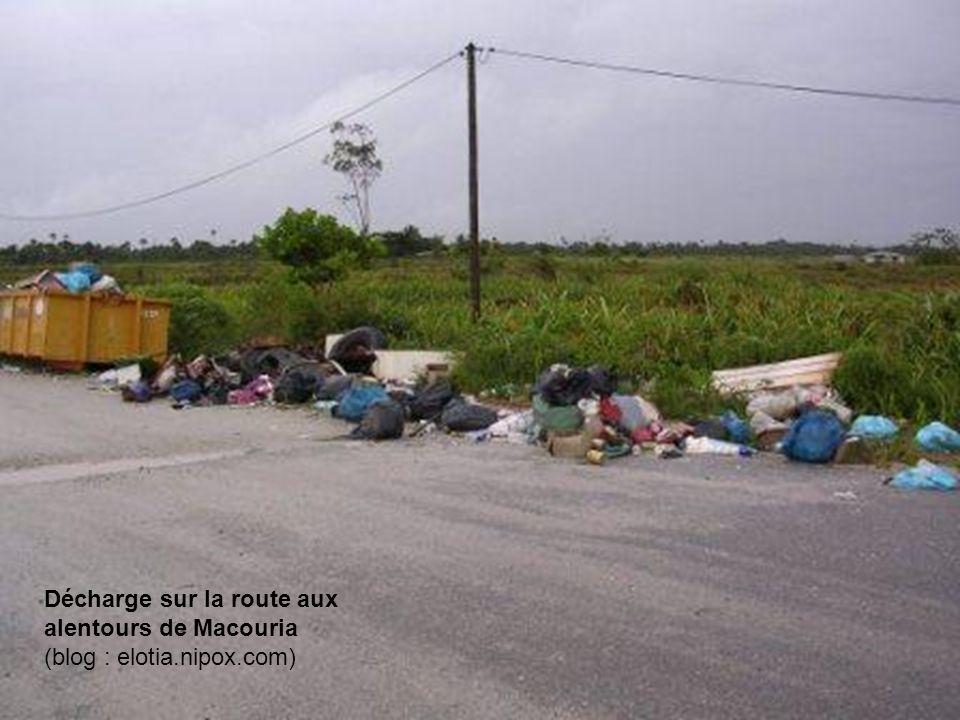 Décharge sur la route aux alentours de Macouria (blog : elotia.nipox.com)