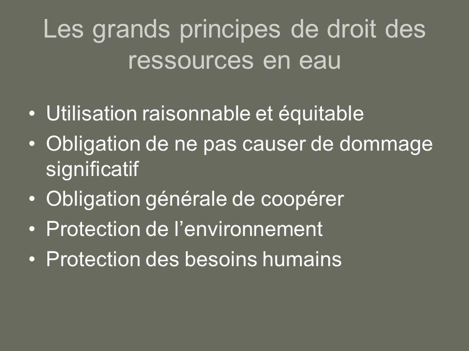 Les grands principes de droit des ressources en eau Utilisation raisonnable et équitable Obligation de ne pas causer de dommage significatif Obligatio
