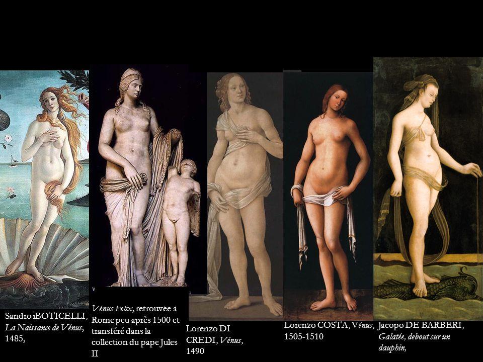 Lorenzo COSTA, Vénus, 1505-1510 Sandro iBOTICELLI, La Naissance de Vénus, 1485, Jacopo DE BARBERI, Galatée, debout sur un dauphin, Vénus Felix, retrou