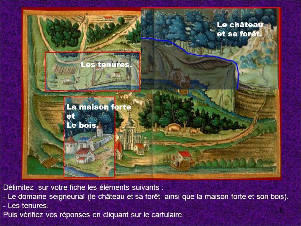 Délimitez sur votre fiche les éléments suivants : - Le domaine seigneurial (le château et sa forêt ainsi que la maison forte et son bois). - Les tenur