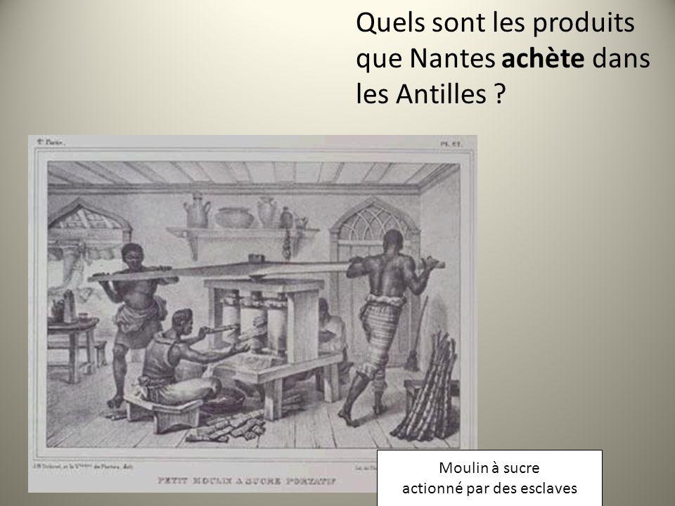 Moulin à sucre actionné par des esclaves Moulin à sucre actionné par des esclaves Quels sont les produits que Nantes achète dans les Antilles ?
