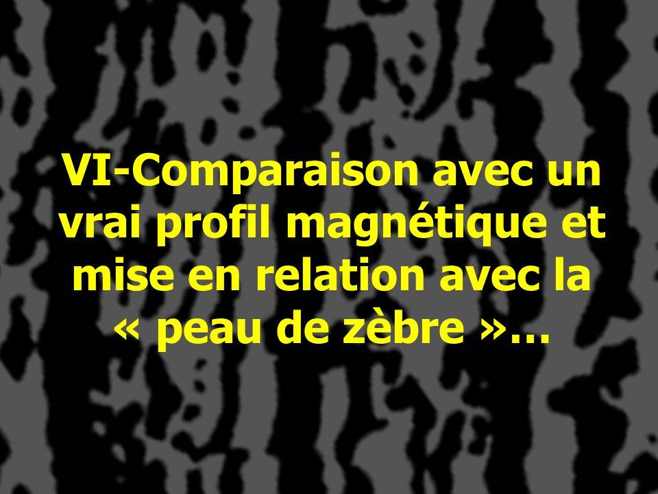 VI-Comparaison avec un vrai profil magnétique et mise en relation avec la « peau de zèbre »…