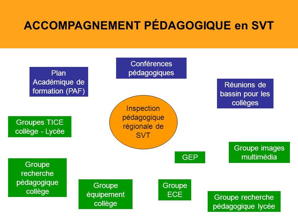 20 ACCOMPAGNEMENT PÉDAGOGIQUE en SVT Plan Académique de formation (PAF) Conférences pédagogiques Réunions de bassin pour les collèges Groupes TICE col