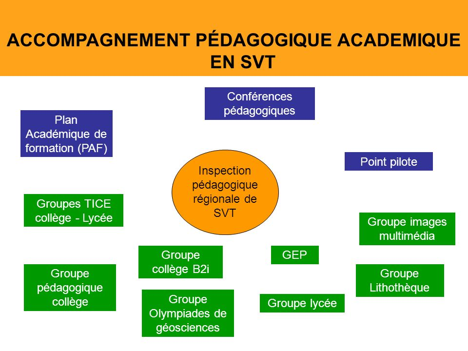 ACCOMPAGNEMENT PÉDAGOGIQUE ACADEMIQUE EN SVT Groupes TICE collège - Lycée Groupe pédagogique collège Groupe images multimédia Groupe lycée Groupe Lith