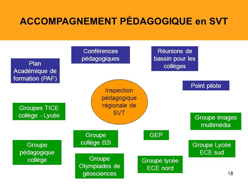 18 ACCOMPAGNEMENT PÉDAGOGIQUE en SVT Groupes TICE collège - Lycée Groupe pédagogique collège Groupe images multimédia Groupe lycée ECE nord Groupe Lyc