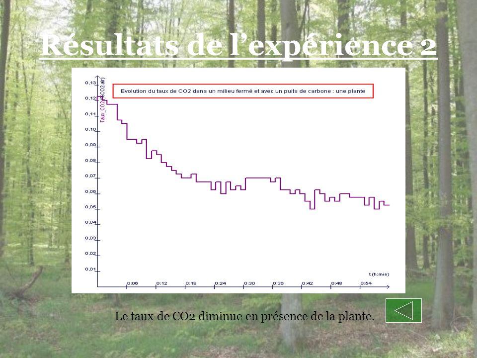 Résultats de lexpérience 2 Le taux de CO2 diminue en présence de la plante.