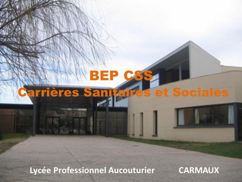Lycée Professionnel Aucouturier CARMAUX BEP CSS Carrières Sanitaires et Sociales