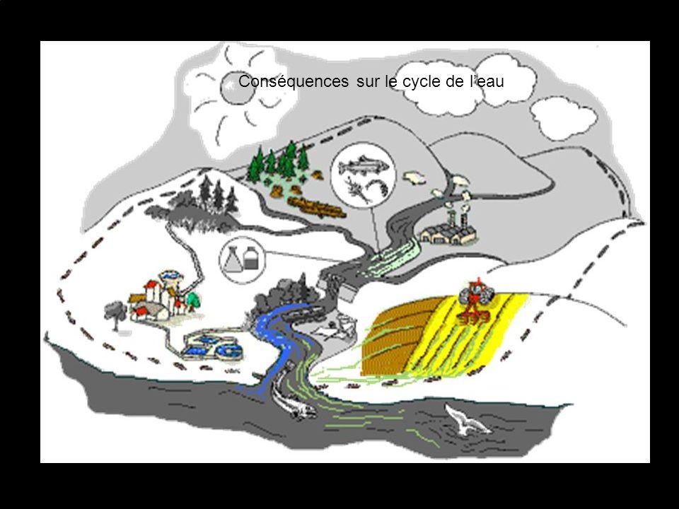 Conséquences sur le cycle de leau