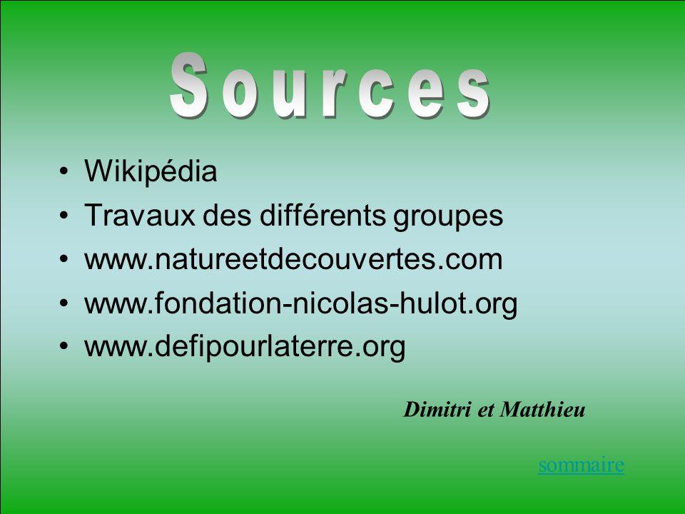 Wikipédia Travaux des différents groupes www.natureetdecouvertes.com www.fondation-nicolas-hulot.org www.defipourlaterre.org sommaire Dimitri et Matth