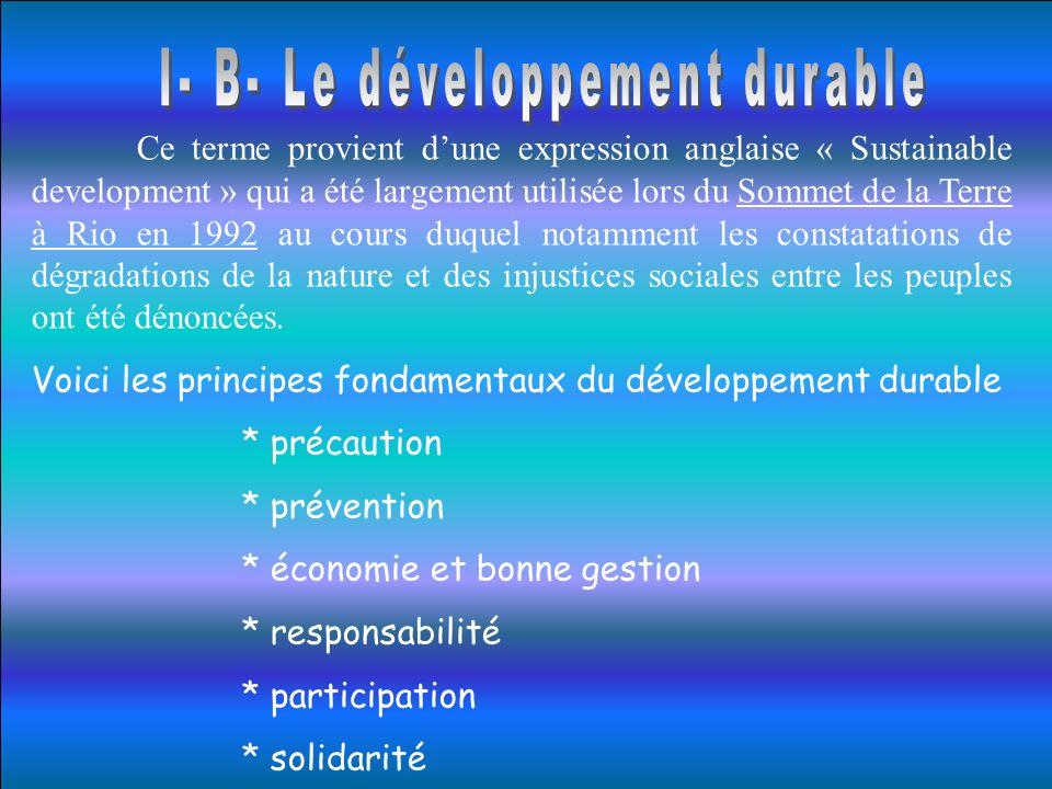 Ce terme provient dune expression anglaise « Sustainable development » qui a été largement utilisée lors du Sommet de la Terre à Rio en 1992 au cours